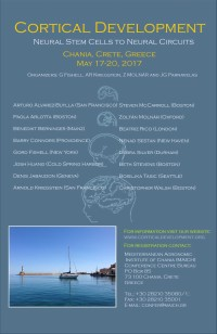 Cortical Development Conference 2017 Poster