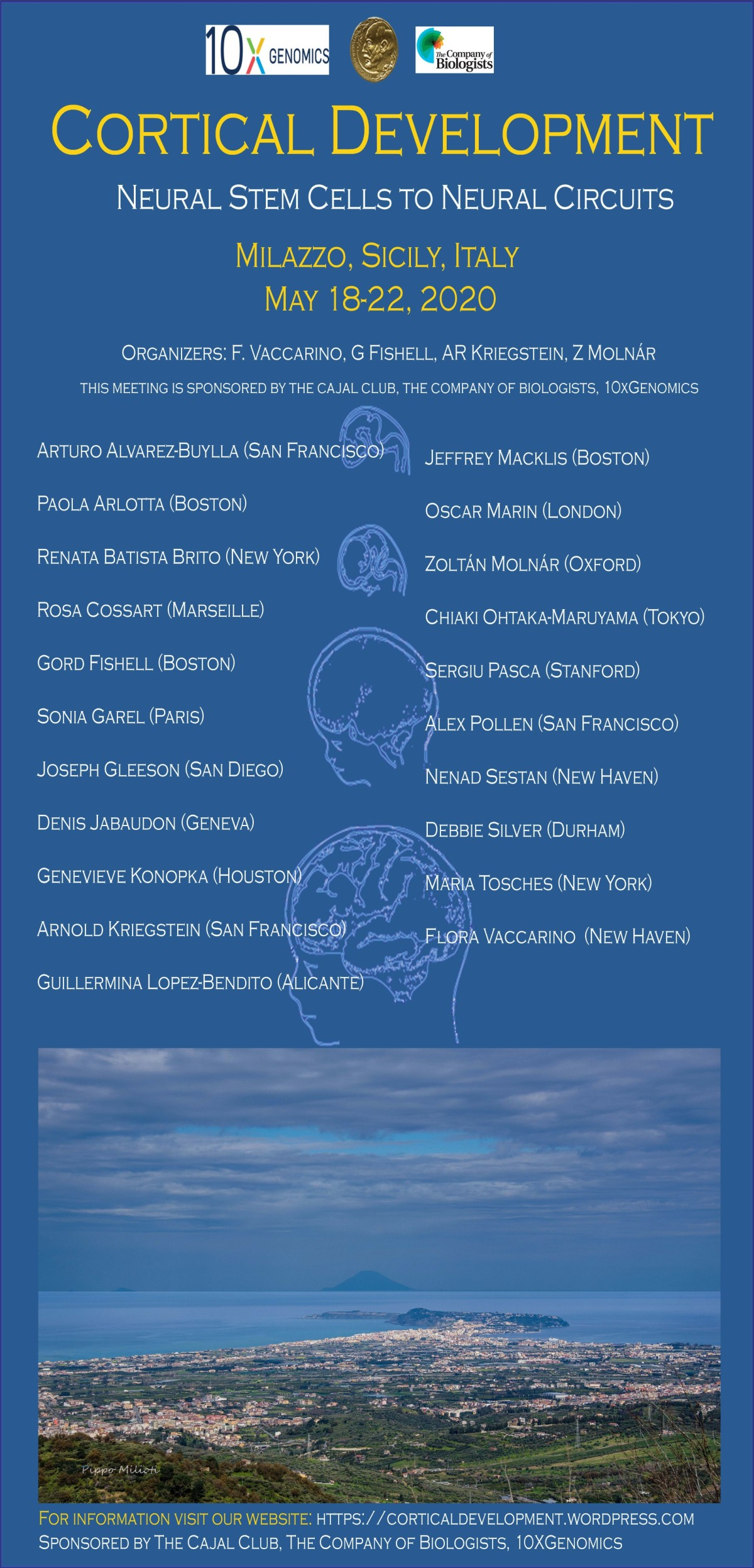 Cortical Development Conference 2020 Poster